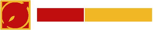 Boostinternet logo 500x100px t