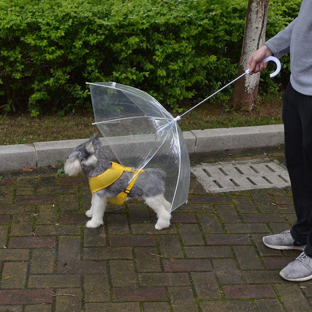 Прозрачный ПЭТ зонтик маленькая собака Зонты от дождя с собака ведет держит ПЭТ сухой комфортно в... зонты