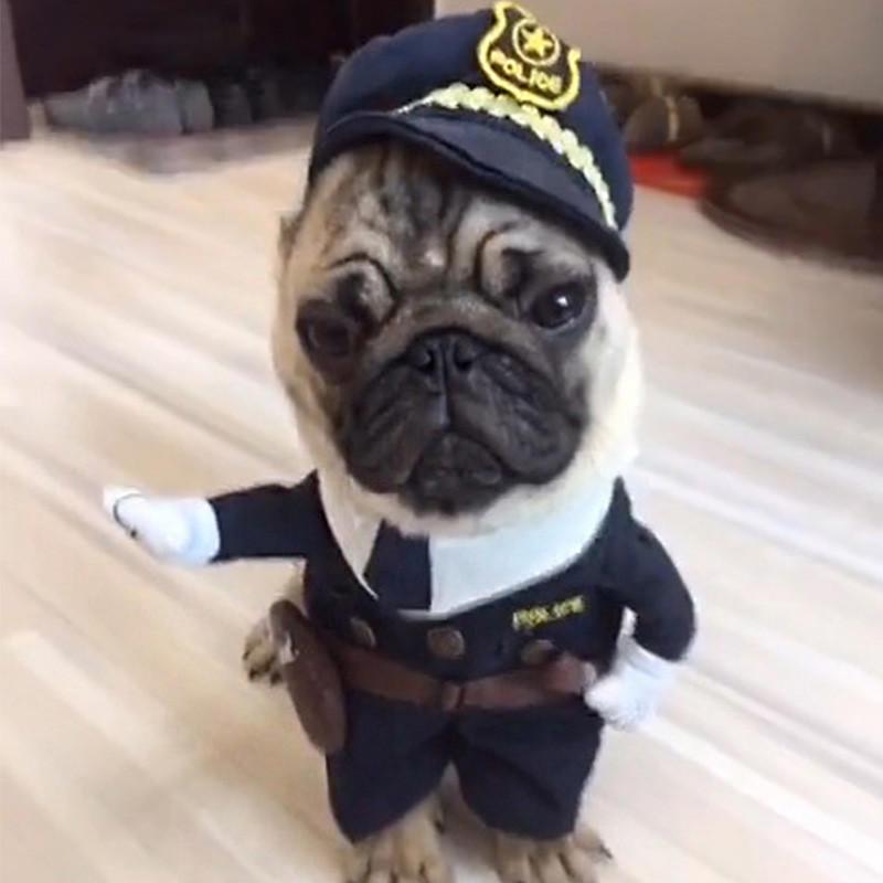 Полиция Pet собаки кошки костюм костюм одежды костюмы супергероев полиции Хэллоуин платье костюмы wonderkids костюм