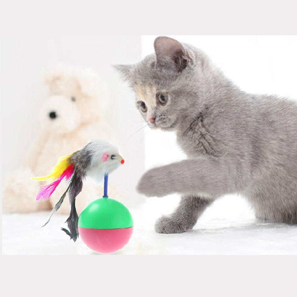 Toys for cats to play with