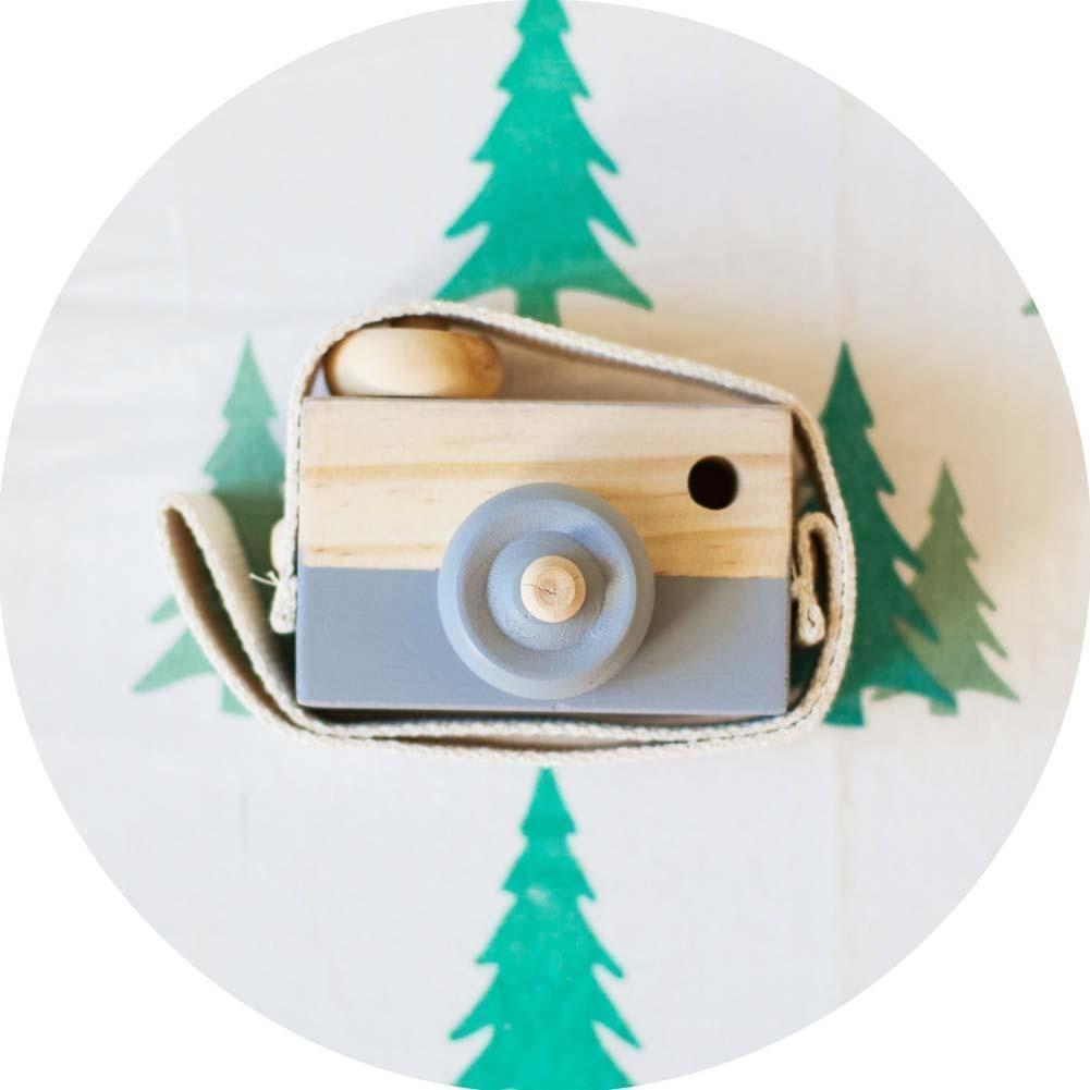Обучение исследование игрушка древесины камеры образовательные игрушки для детей детей Baby серый игрушки для детей