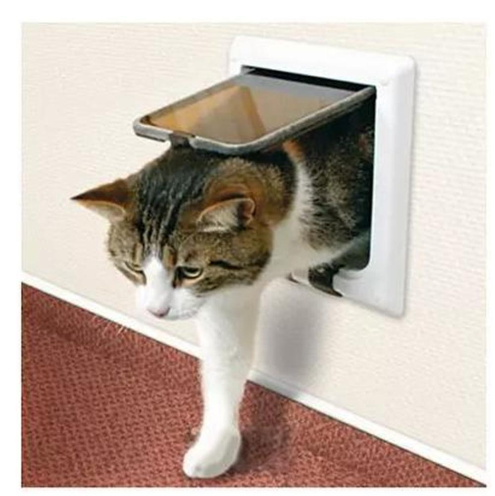 can you get rid of cat smell in house