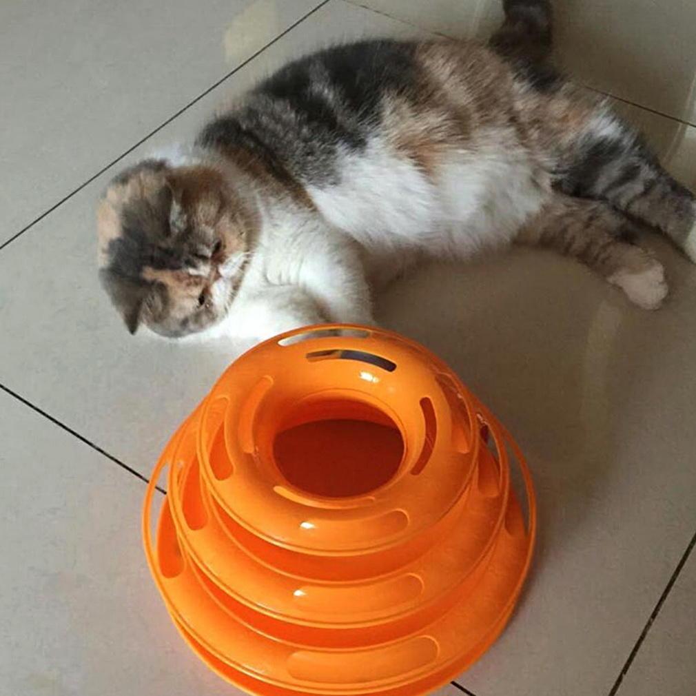 cat urine on wood floors