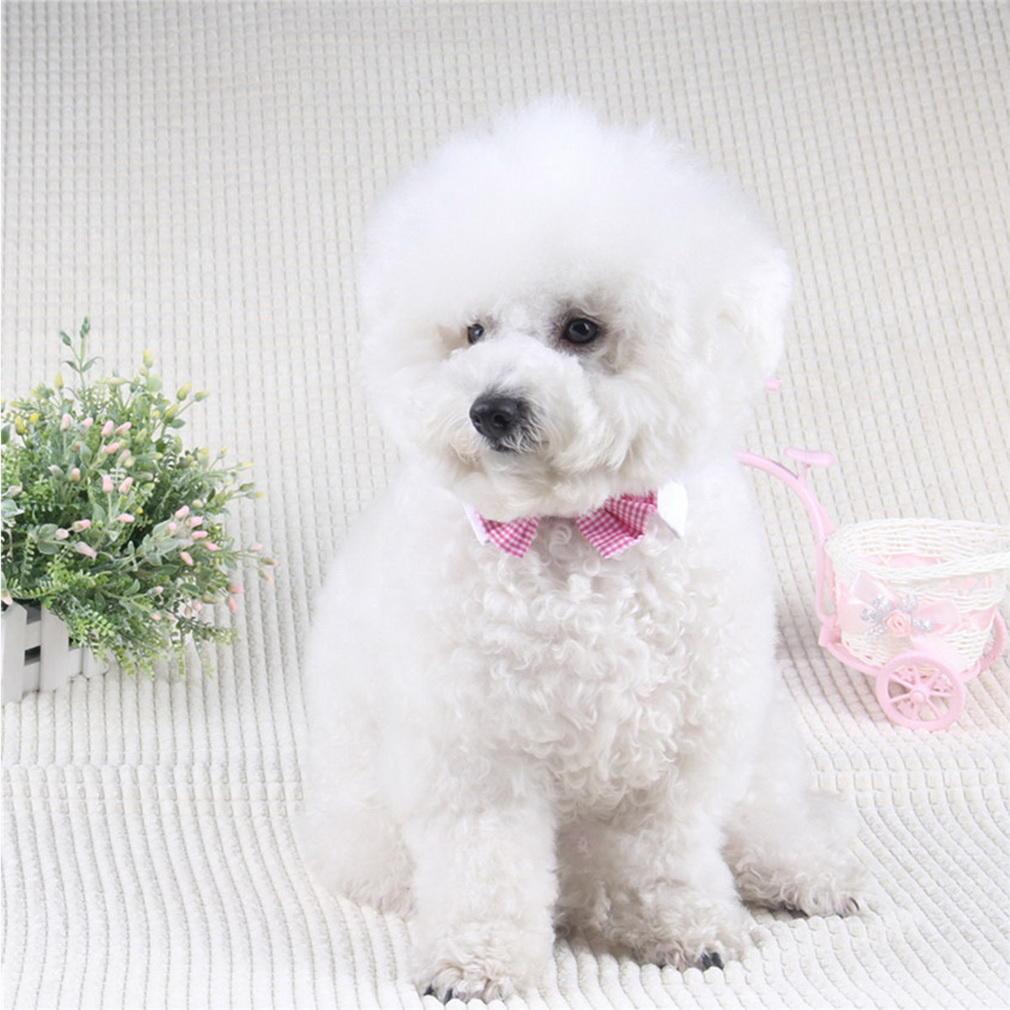 Новый питомец собака связи галстуки Свадебные аксессуары собака воротник Bowtie праздники галстуки
