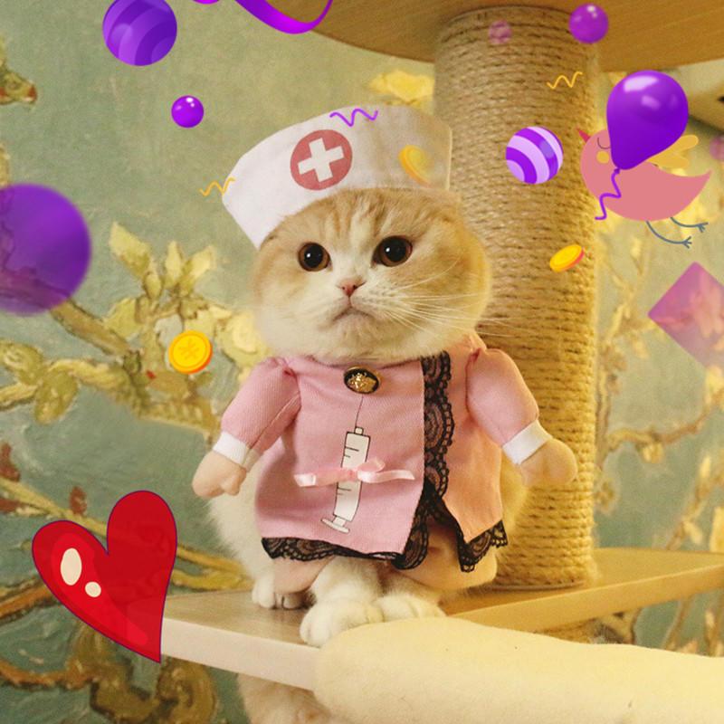 Новый питомец собака кошка костюм одежду костюмы медсестра партии Хэллоуин платье костюм костюмы wonderkids костюм