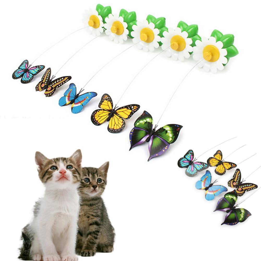 cat anti anxiety medicine