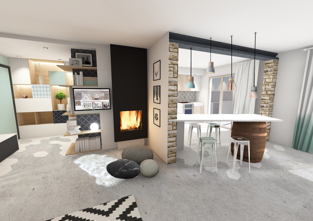 Agencer un grand s jour contemporain et scandinave sans se Wohnungseinrichtung modern