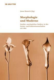 morphologie und moderne pdf