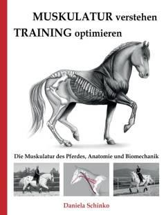 muskulatur verstehen training optimieren pdf