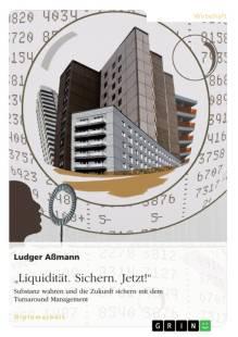 sicherung der liquiditat im turnaround management pdf