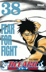 bleach tome 38 fear for fight