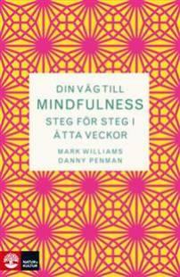 din_vag_till_mindfulness.pdf
