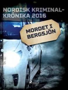 mordet_i_bergsjon.pdf