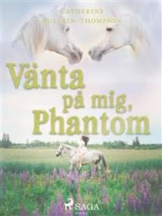 vanta_pa_mig_phantom.pdf