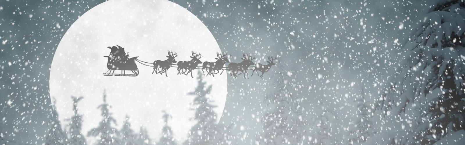 Hyvää ja rauhallista joulua kaikille!