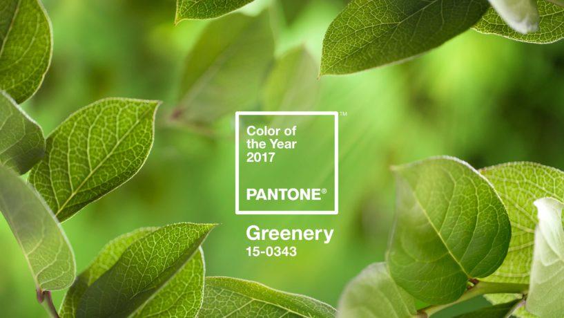 Greenery, la couleur Pantone de l'année 2017
