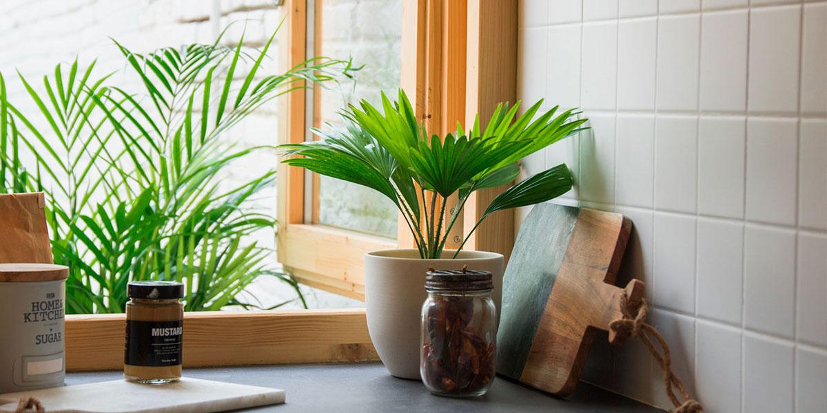 Come arredare con vasi da fiori e piante
