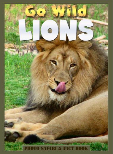 Go Wild Lions