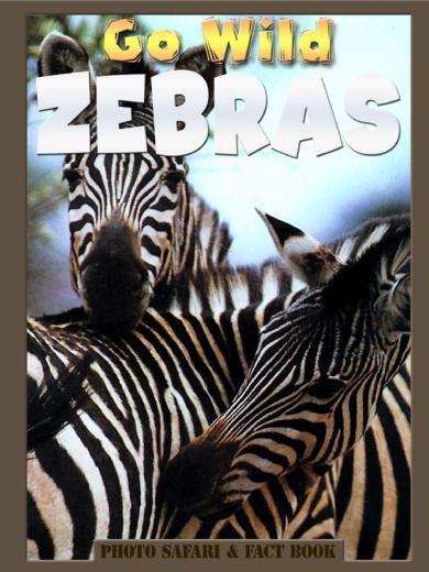 Go Wild Zebras
