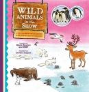 Wild Animals in the Snow