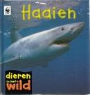 Haaien