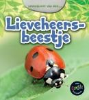 Levensloop van een lieveheersbeestje