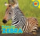 AV+ Zebra