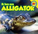 AV+ Alligator