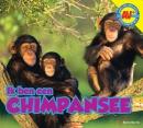 Chimpansee, Ik ben een... - Corona AV+
