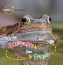 Von der Kaulquappe zum Frosch