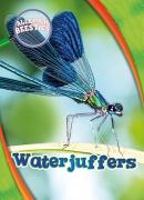 Waterjuffers