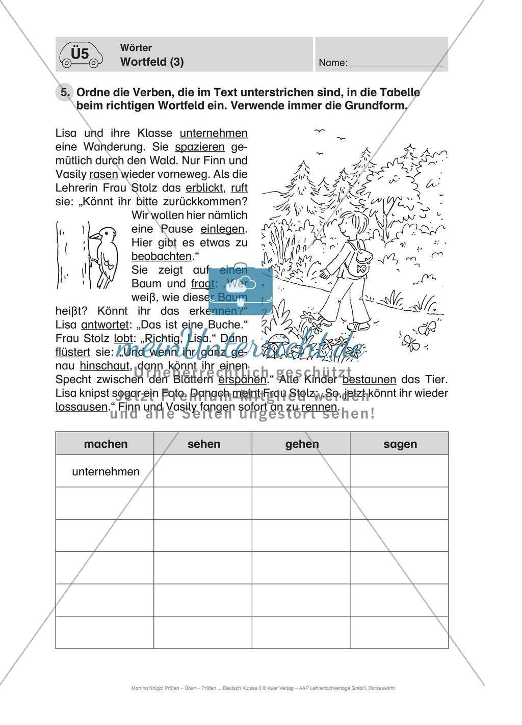 Wörter, Wortfeld: Führerschein-Übungsaufgaben und Lösung Preview 2