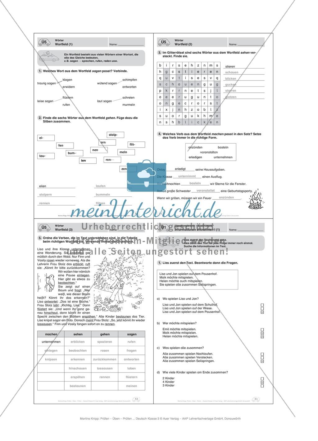 Wörter, Wortfeld: Führerschein-Übungsaufgaben und Lösung Preview 4