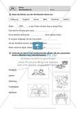 Wörter, Wortfamilie: Führerschein-Übungsaufgaben und Lösung Preview 2