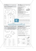 Wörter, Wortfamilie: Führerschein-Übungsaufgaben und Lösung Preview 3