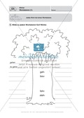 Wörter, Wortstamm: Führerschein-Übungsaufgaben und Lösung Preview 1