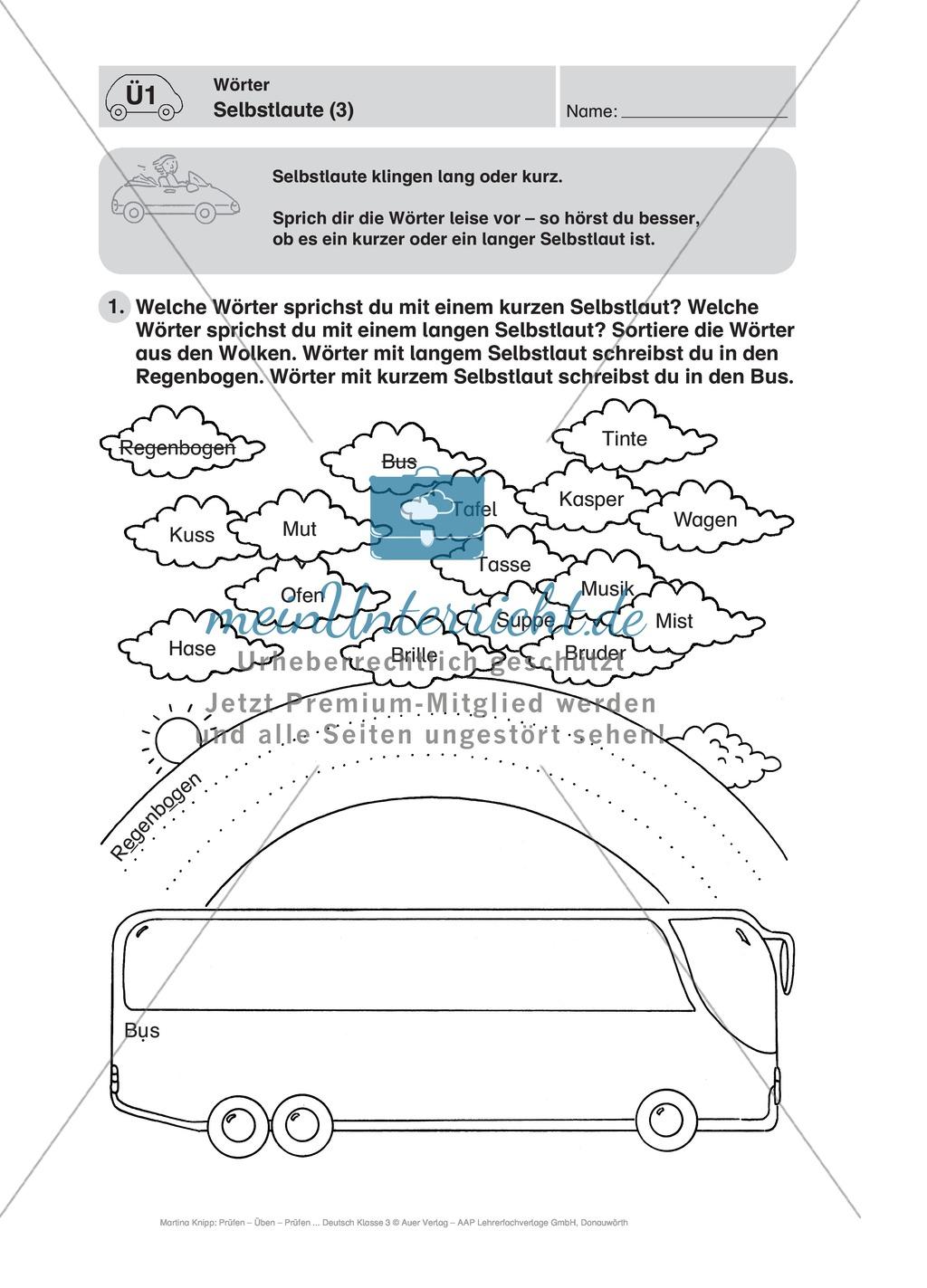 Wörter, Selbstlaute: Führerschein-Übungsaufgaben und Lösung Preview 2
