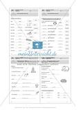 Wortarten, Adjektive: Führerschein-Übungsaufgaben und Lösung Preview 5