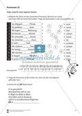 Pronomen: Übungen + Lösungen Preview 2