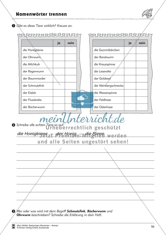 Namenwörter zusammensetzen: Arbeitsblätter Preview 16