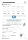 Namenwörter zusammensetzen: Arbeitsblätter Preview 19