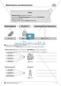 Namenwörter zusammensetzen: Arbeitsblätter Preview 4