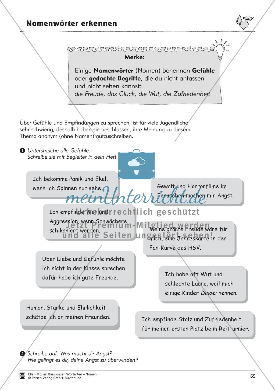 Namenwörter erkennen: Gefühle und Begriffe: Arbeitsblätter und Test Preview 0