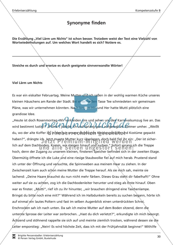 Eine Erlebniserzählung schreiben: Vom Wortfeld bis zur Erzählung (mittleres Niveau) Preview 11