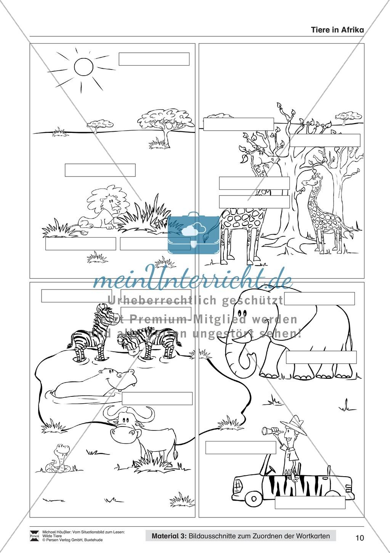 Leseförderung Wilde Tiere: Arbeitshinweise, Unterrichtsmodell, Bilder, Arbeitsblätter, Lesespiel und Kontrollblatt Preview 9