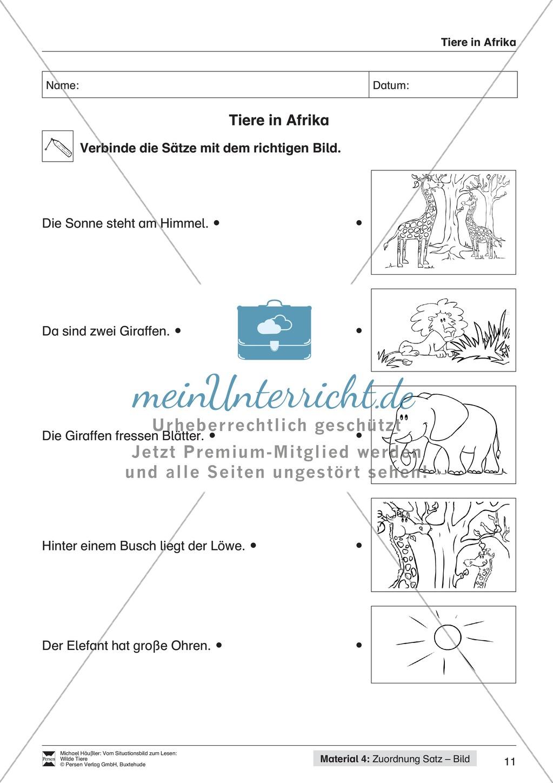 Leseförderung Wilde Tiere: Arbeitshinweise, Unterrichtsmodell, Bilder, Arbeitsblätter, Lesespiel und Kontrollblatt Preview 10