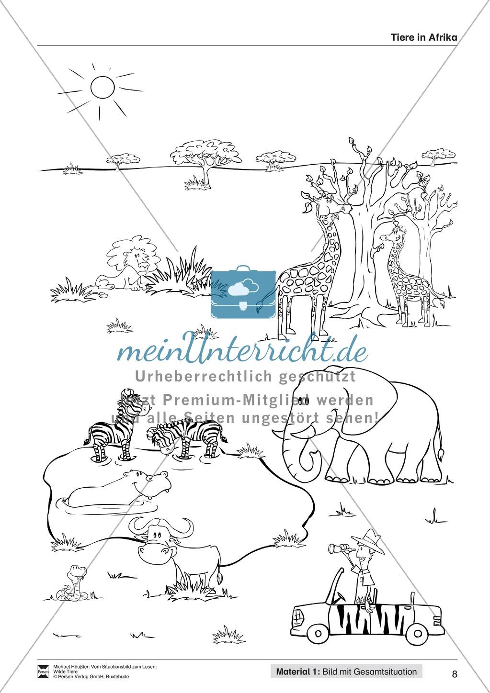 Leseförderung Wilde Tiere: Arbeitshinweise, Unterrichtsmodell, Bilder, Arbeitsblätter, Lesespiel und Kontrollblatt Preview 7