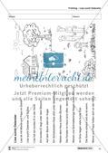 Vom Situationsbild zum Lesen, Thema Frühling: Unterrichtsentwurf und Materialien komplett Preview 15