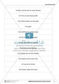 Leseförderung Piratenschiff: Unterrichtsmodell, Bilder, Arbeitsblätter, Lesespiel und Kontrollblatt Preview 10