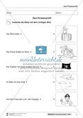 Leseförderung Piratenschiff: Unterrichtsmodell, Bilder, Arbeitsblätter, Lesespiel und Kontrollblatt Preview 8